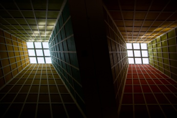 A real picture! The ceiling of a mall in Singapore.