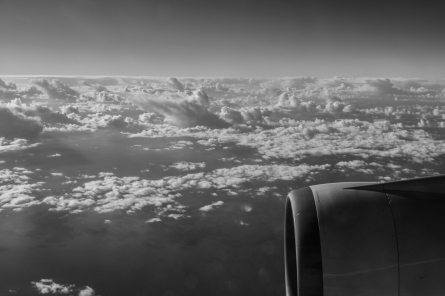 Flight Home-037