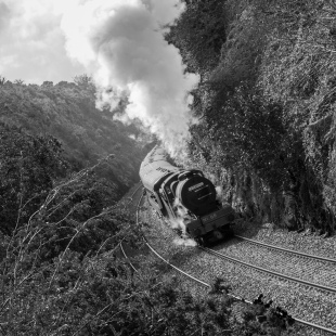 We joined a group of photographers to catch this steam locomotive which runs once a year across Ireland.