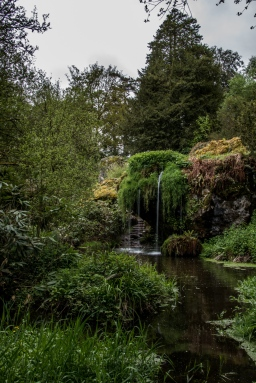 The sign says you will have good luck if you walk backwards up the stairway behind this waterfall. It's a deal between the Blarney grounds and a local witch.