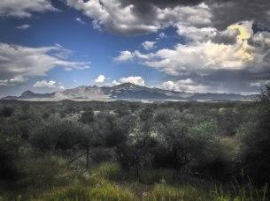 Near Tubac, south of Tucson