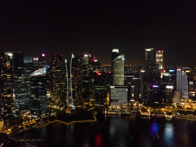 view form the Marina Bay Sands